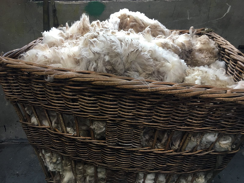 basket-of-wool